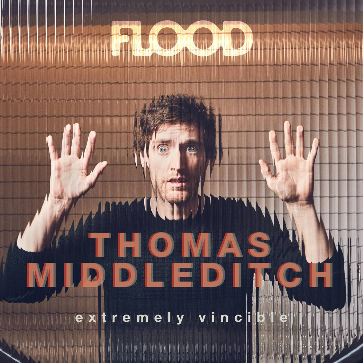 thomas middleditch x flood